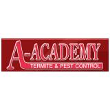 A-Academy
